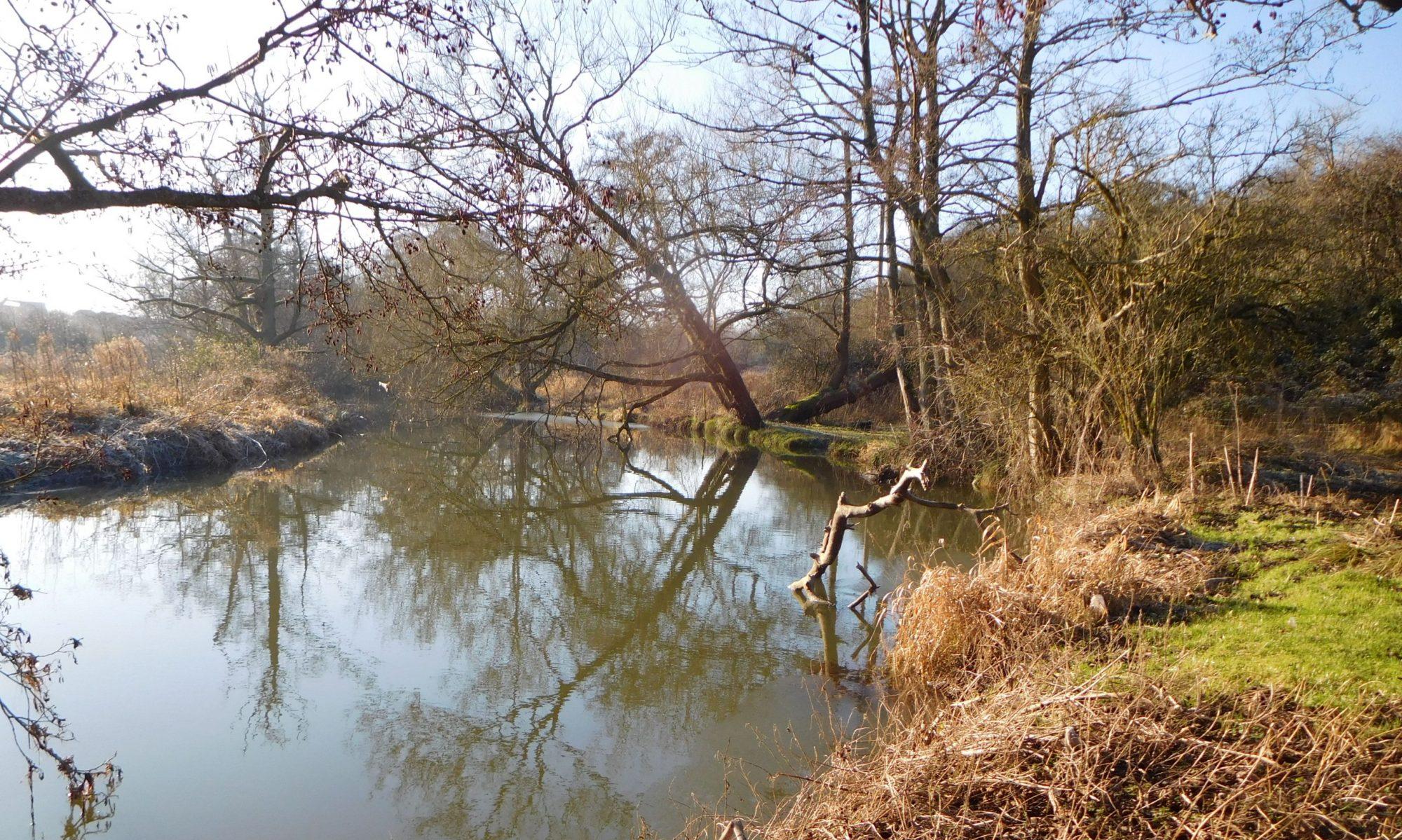 Save Wallbridge Adderwell Path